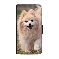 Hund Pomeranian Huawei P20...