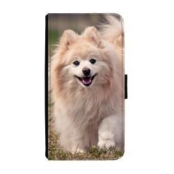 Hund Pomeranian Samsung...