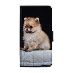 Pomeranian Valp Huawei...