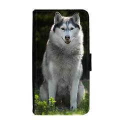 Hund Siberian Husky Huawei...