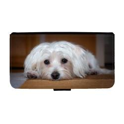 Hund Malteser Huawei Mate...