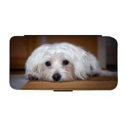 Hund Malteser Huawei P20...