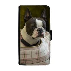 Hund Bostonterrier Huawei...