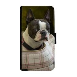 Hund Bostonterrier Samsung...