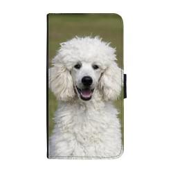 Hund Pudel Huawei P10...