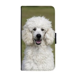 Hund Pudel Huawei P30...