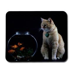 Katt & Fiskar Musmatta