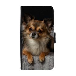 Chihuahua Huawei P10...