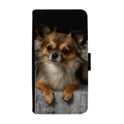 Långhårig Chihuahua Samsung...