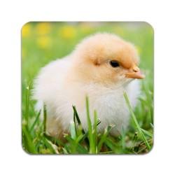 2 ST Kyckling Underlägg