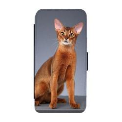 Katt Abessinier iPhone 12...