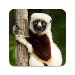 2 ST Lemur Underlägg